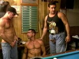 Pool hall bears swallow big weenies